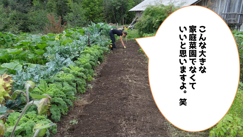 家庭菜園は実益の趣味
